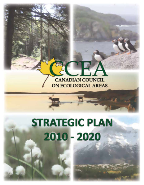 CCEA Strategic Plan 2010-2020